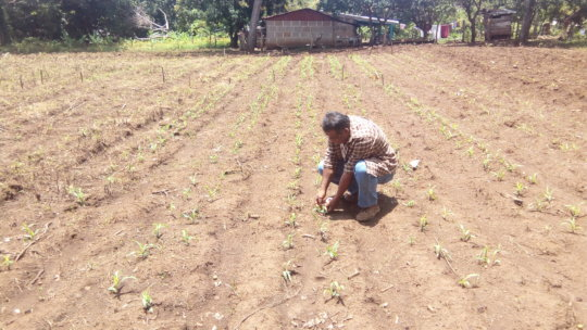 Taking it to the Farmer: Applying Skills Learned